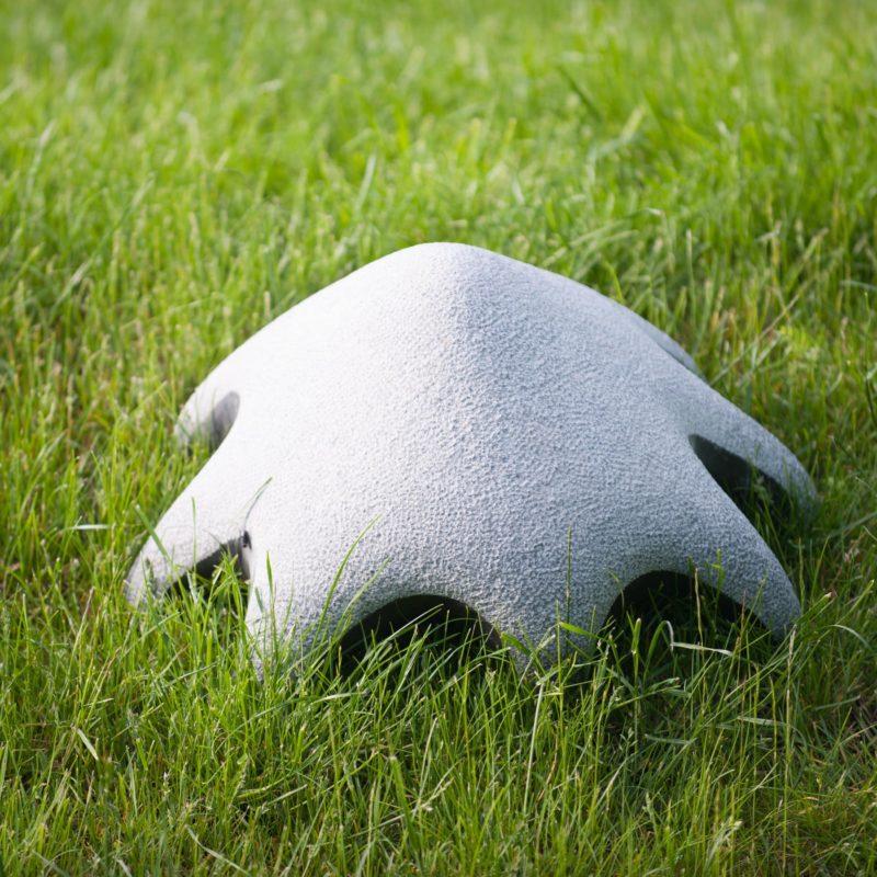 Crawl Creature image