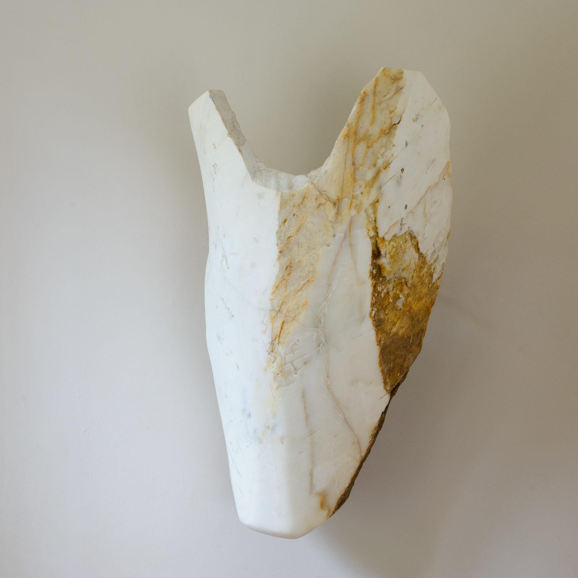 Horse Head image