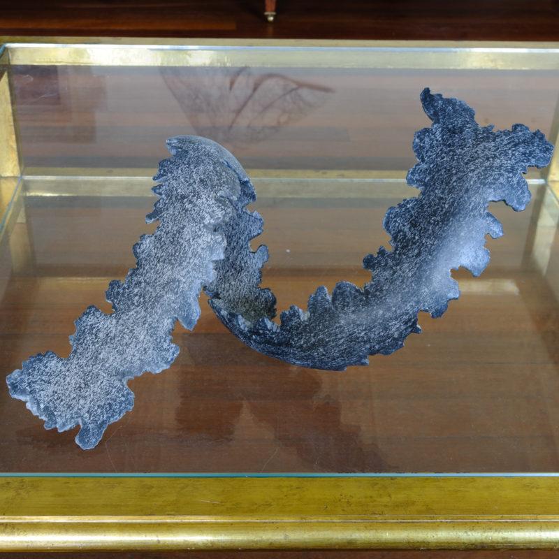 Loop of kelp image