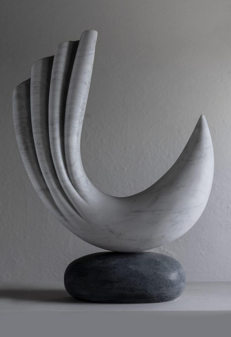 Krillo image