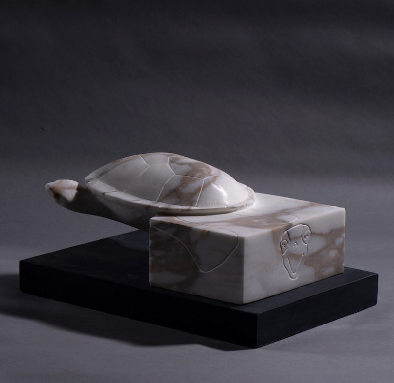 Boxed-in (turtle) image