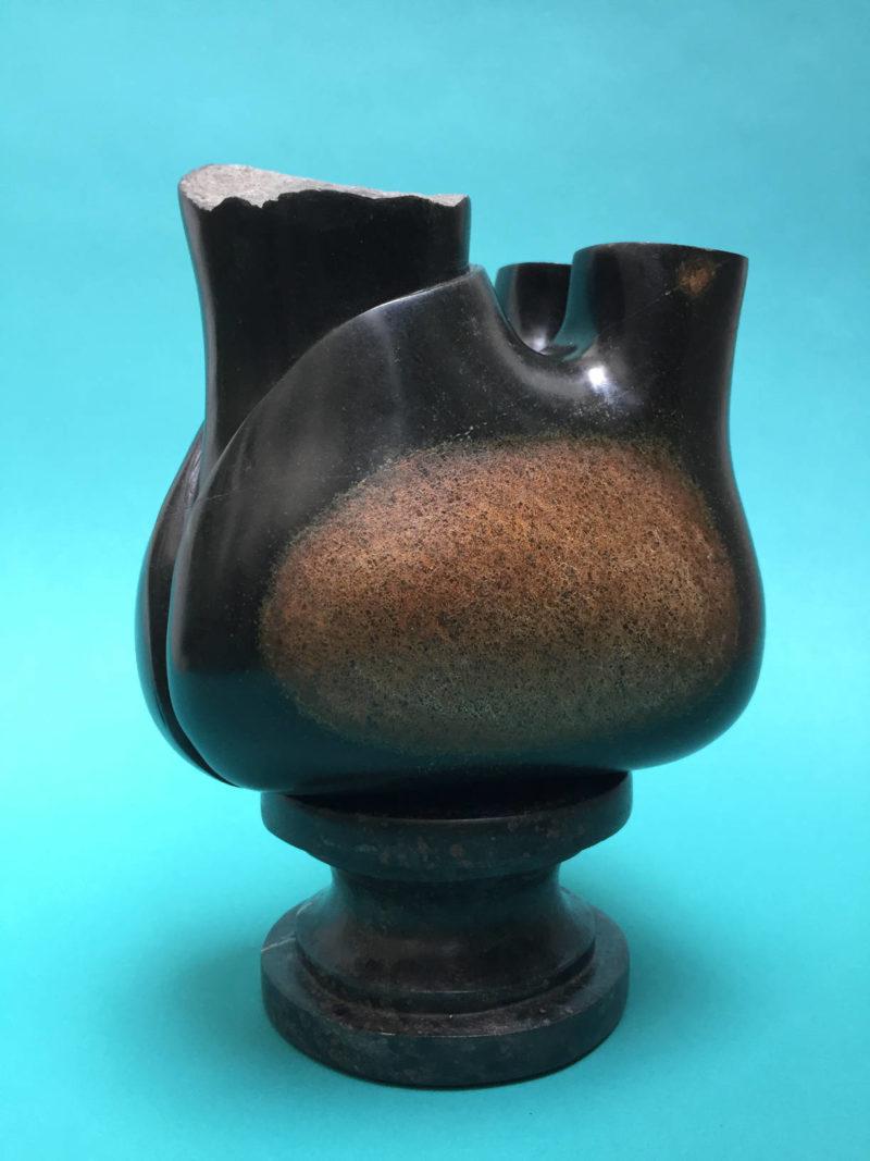 Fennel Bulb I image